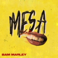 Bam Marley M.E.S.A. Part 1