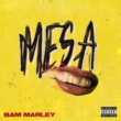Bam Marley