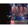 VARGAS BLUES BAND Black Cat Boogie -video directo