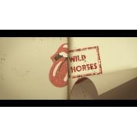 ザ・ローリング・ストーンズ Wild Horses [Acoustic / Lyric Video]