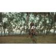 Davido Assurance (Official Video)