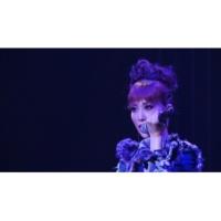 龍 真咲 Silly game(Concert【L.O.T.C 2017】)