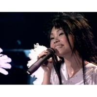 Julia Peng Xiang
