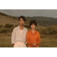 Hsin Chung Tsia Zai Qian Ni De Shou