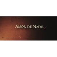 Destino San Javier Amor de Nadie (Official Lyric Video)