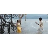 """Anirudh Ravichander/Mohit Chauhan/Shreya Ghoshal Velicha Poove (From """"Ethir Neechal"""")"""