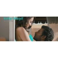 """Yuvanshankar Raja/Udit Narayan/Shweta Mohan Vellai Maiyil (From """"Samar"""")"""
