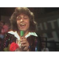 Dennie Christian My Spanish Lady (ZDF Hitparade 03.07.1976) (VOD)
