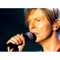 David Bowie Heroes (A Reality Tour)