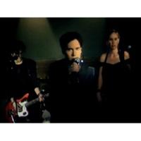 stellastarr* Sweet Troubled Soul (VIDEO)