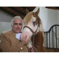 Vicente Fernández Mala ((Video))