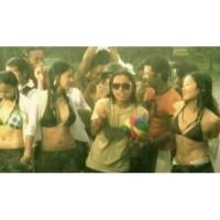 Brownman Revival Reggae Fever