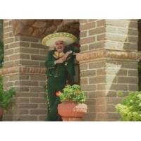 Vicente Fernández El Ultimo En La Fila (Video)