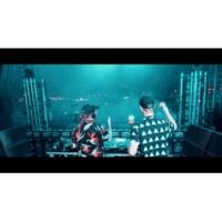 サブ・フォーカス/WILKINSON Illuminate [Official Tour Video]
