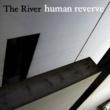 The River 夢カード