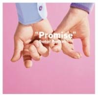ソナーポケット Promise