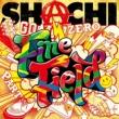 SHACHI Fine Field