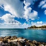 HYBRID COLORS