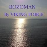 Viking Force
