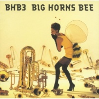 BIG HORNS BEE INTRODUCTION