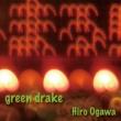 ヒロオガワ green drake