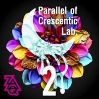 ZAQ Parallel of Crescentic Lab. 2