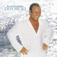Julio Iglesias Echame A Mi La Culpa (Album Version)