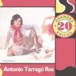 Antonio Tarragó Ros
