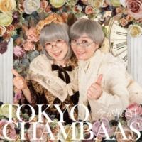 東京チャンバアズ 今が最高!