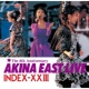 中森明菜 AKINA EAST LIVE  INDEX-ⅩⅩIII