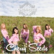 CHERRSEE Cherry Seeds