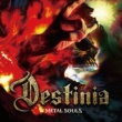 Nozomu Wakai's DESTINIA Metal Souls