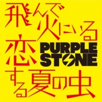 Purple Stone 飛んで火にいる恋する夏の虫