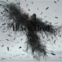 Aimer Black Bird / Tiny Dancers / 思い出は奇麗で