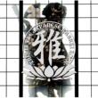 MIYAVI 雅 -THIS IZ THE JAPANESE KABUKI ROCK-