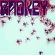 Radkey No Strange Cats...Spiders