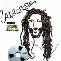Alborosie Alborosie Meets Roots Radics: Dub For The Radicals