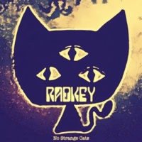 Radkey No Strange Cats