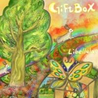 Libellula GIFT BOX