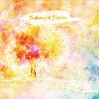 TOPHAMHAT-KYO Sakuraful Palette