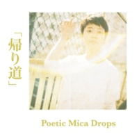 Poetic Mica Drops 帰り道
