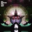 Noel Gallagher's High Flying Birds Black Star Dancing