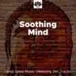 Amazing Sounds & Asian Zen Spa Music Meditation Soothing Mind: Deep Sleep Music, Soothing Ocean Waves, Relaxing Zen Tracks, Sounds of Nature, Soothe your Soul, Rain & Ocean sounds, Sleep Therapy