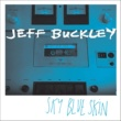 Jeff Buckley Sky Blue Skin (Demo - September 13, 1996)