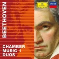 ギドン・クレーメル/マルタ・アルゲリッチ ヴァイオリン・ソナタ 第1番 ニ長調 作品12の1: 第1楽章: Allegro Con Brio