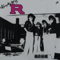 T.C.R.横浜銀蝿R.S. 男の勲章