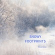 Bluewist Snowy Footprints