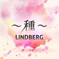 LINDBERG ~種~