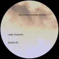 Steven Blair Asymmetric Response (Remixes)
