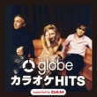 globe globe カラオケ HITS supported by DAM